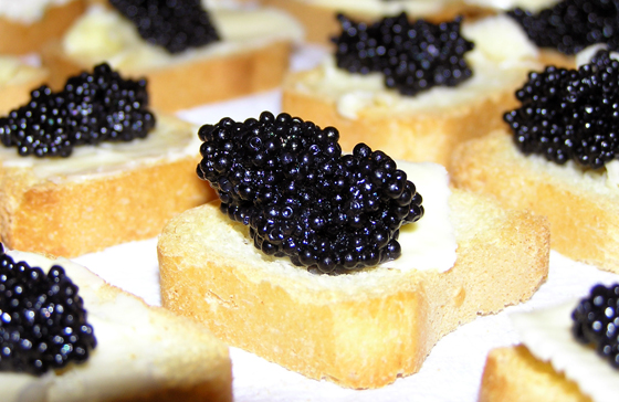 caviar negro e torradas